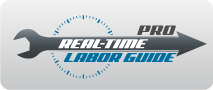 real_time_labor_guide_pro
